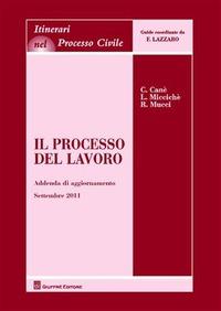 Il Il processo del lavoro. Addenda di aggiornamento al settembre 2011 - Canè Claudia Miccichè Loredana Mucci Roberto - wuz.it