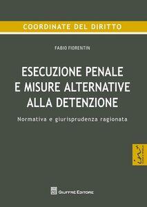 Foto Cover di Esecuzione penale e misure alternative alla detenzione. Normativa e giurisprudenza ragionata, Libro di Fabio Fiorentin, edito da Giuffrè