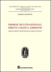 Imprese multinazionali, diritti umani e ambiente. Profili di diritto internazionale pubblico e privato