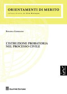Foto Cover di L' istruzione probatoria nel processo civile, Libro di Rosaria Giordano, edito da Giuffrè