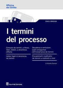 Foto Cover di I termini del processo, Libro di Giosetta Pianezze, edito da Giuffrè