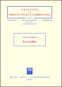 Libro La vendita Angelo Luminoso