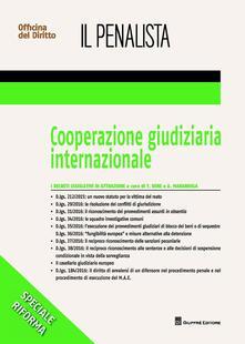 Cooperazione giudiziaria internazionale - copertina