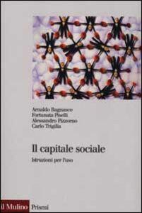 Libro Il capitale sociale. Istruzione per l'uso