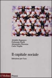 Il capitale sociale. Istruzione per l'uso