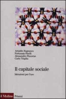 Warholgenova.it Il capitale sociale. Istruzione per l'uso Image