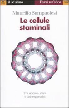 Camfeed.it Le cellule staminali. Tra scienza, etica ed usi terapeutici Image