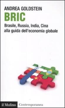 Bric. Brasile, Russia, India, Cina alla guida dell'economia globale - Andrea Goldstein - copertina