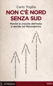 Libro Non c'è Nord senza Sud. Perché la crescita dell'Italia si decide nel Mezzogiorno Carlo Trigilia