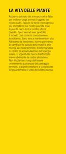 La vita delle piante. Metafisica della mescolanza - Emanuele Coccia - 3