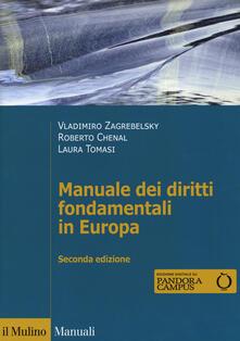 Daddyswing.es Manuale dei diritti fondamentali in Europa. Con espansione online Image
