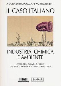 Libro Il caso italiano. Industria, chimica e ambiente. Con CD-ROM