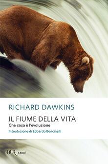 Il fiume della vita. Che cosa è l'evoluzione - Richard Dawkins - copertina