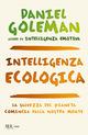 Intelligenza ecologi