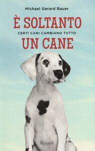 Foto Cover di È soltanto un cane. Certi cani cambiano tutto, Libro di Michael G. Bauer, edito da Rizzoli