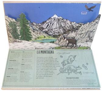 Libro Animalia. Viaggio animato nel mondo degli animali. Libro pop-up Arnaud Roi , Hélène Rajcak 2