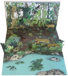 Libro Animalia. Viaggio animato nel mondo degli animali. Libro pop-up Arnaud Roi , Hélène Rajcak 3