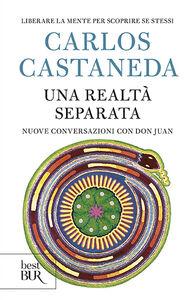 Libro Una realtà separata. Nuove conversazioni con don Juan Carlos Castaneda