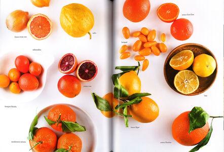 Libro I love Eataly. Il cibo italiano narrato e cucinato  2