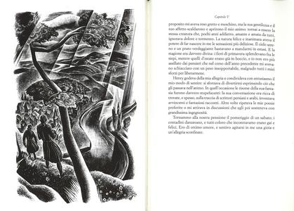 Libro Frankenstein Mary Shelley 2