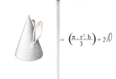 Libro Il coniglio d'oro Luigi Serafini , Daniela Trasatti 1