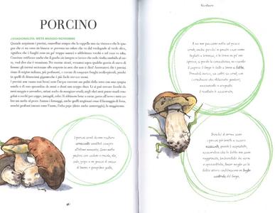 Libro Cerco sapori in piazza Grande. 70 ingredienti per 70 ricette, alla scoperta del gusto nella cucina di uno chef Bruno Barbieri 1