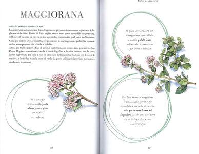 Libro Cerco sapori in piazza Grande. 70 ingredienti per 70 ricette, alla scoperta del gusto nella cucina di uno chef Bruno Barbieri 3