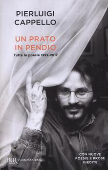 Secchiarapita.it Un prato in pendio. Tutte le poesie 1992-2017 Image