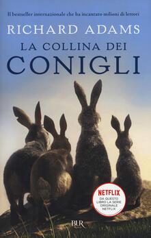 Camfeed.it La collina dei conigli Image