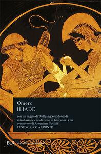 Libro L' iliade Omero