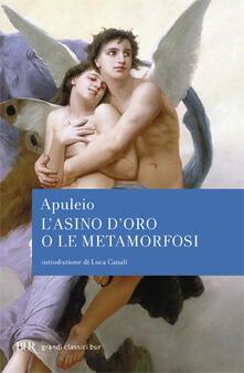 L asino doro o le Metamorfosi.pdf