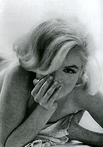 Libro Marilyn. L'ultima seduta Bert Stern