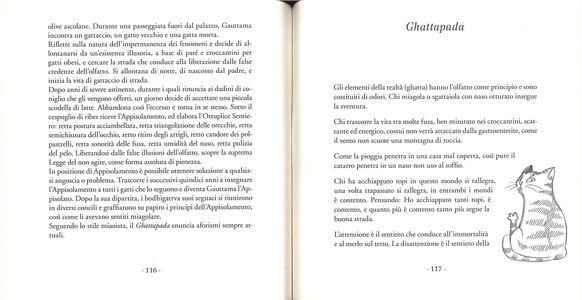 Foto Cover di La religione gattolica. La saggezza millenaria dei maestri felini, Libro di Daniela Maddalena, edito da Sperling & Kupfer 3