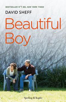 Beautiful boy. Ediz. italiana.pdf