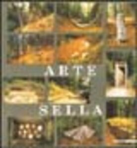 Libro Arte Sella. Documentazione 1998. Ediz. multilingue Enrico Ferrari , Jacques Leénhardt