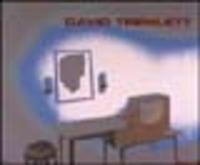 David Tremlett. Se i muri potessero parlare. If walls could talk. 1995-2000. Catalogo della mostra (Trento, 2001). Ediz. italiana e inglese - - wuz.it