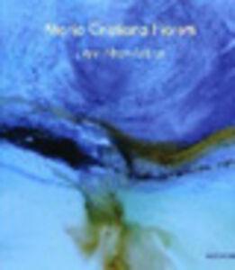 Libro Maria Cristiana Fioretti. Light Abstr-Action. Ediz. italiana e inglese Jacqueline Ceresoli , Francesco Murano , Domenico Nicolamarino