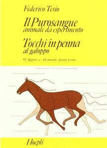 Libro Il purosangue: animale da esperimento. Tocchi in penna al galoppo Federico Tesio