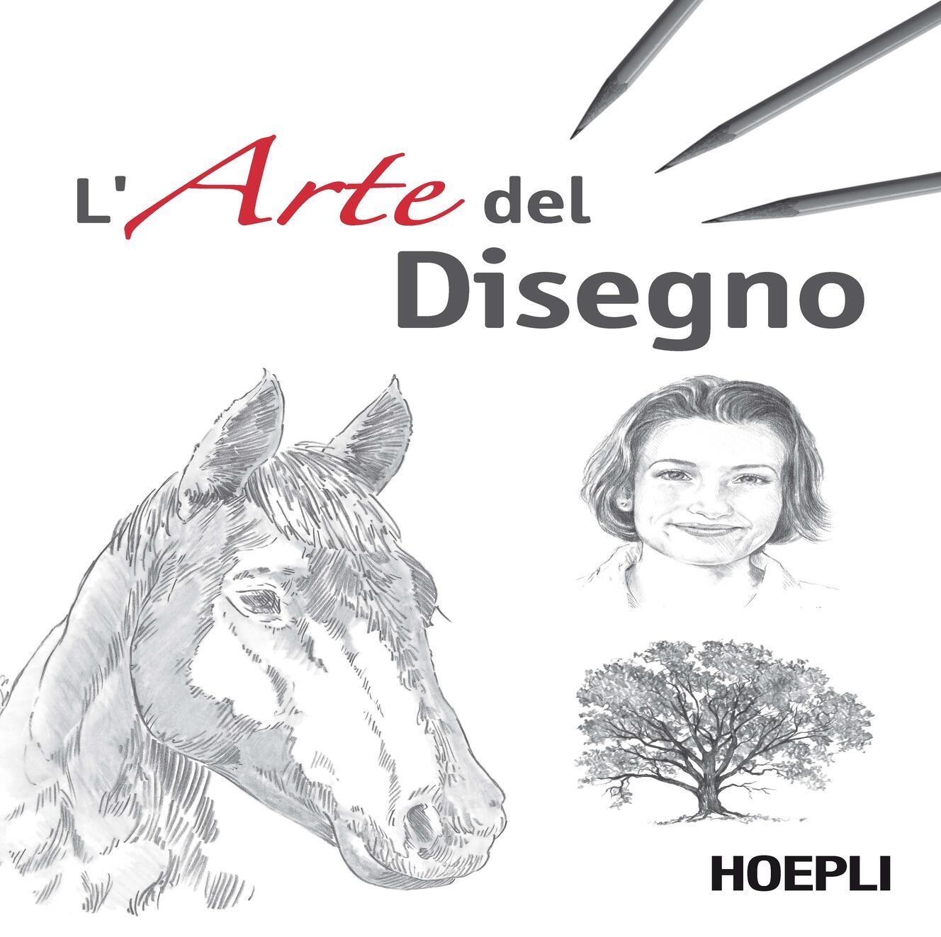 l u0026 39  arte del disegno - c  grimaldi - libro - hoepli