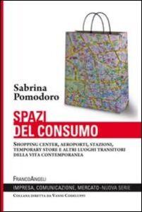 Libro Spazi del consumo. Shopping center, aeroporti, stazioni, temporary store e altri luoghi transitori della vita contemporanea Sabrina Pomodoro