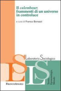 Foto Cover di Il calembour: frammenti di un universo in controluce, Libro di  edito da Franco Angeli