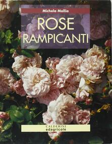 Amatigota.it Rose rampicanti Image