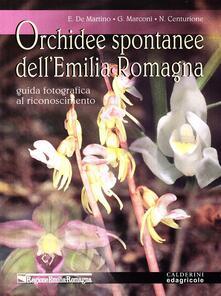 Daddyswing.es Orchidee spontanee dell'Emilia Romagna. Guida fotografica al riconoscimento Image