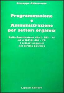 Programmazione e amministrazione per settori organici