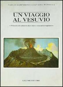 Un viaggio al Vesuvio. Il Vesuvio visto attraverso diari, lettere e resoconti di viaggiatori