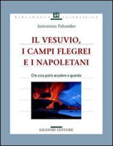 Libro Il Vesuvio, i Campi Flegrei e i napoletani. Che cosa potrà accadere e quando Antonino Palumbo