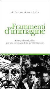 Libro Frammenti d'immagine. Scene, schermi, video per una sociologia della sperimentazione Alfonso Amendola