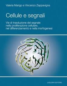 Voluntariadobaleares2014.es Cellule e segnali. Vie di trasduzione del segnale nella proliferazione cellulare e nella morfogenesi Image