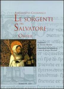 Le sorgenti del Salvatore. Omelie