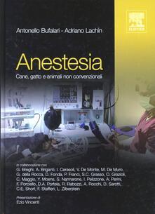 Osteriacasadimare.it Anestesia cane, gatto e animali non convenzionali Image